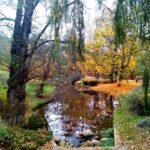 Szymon Ratajczyk - Jesienna magia kolorów