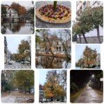 Oliwier Grzybowski - Jesień wokół nas